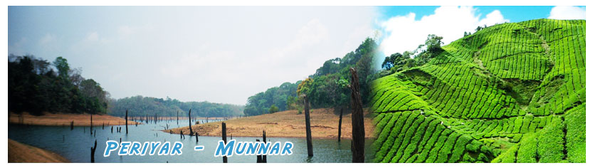 periyar tour packages